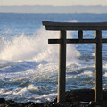 荒ぶる海を見つめ