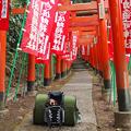写真: 佐助稲荷神社2