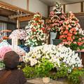 Photos: 氷川町岩〇さん家