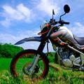 Photos: 青空とバイク