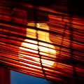 写真: フィラメントの灯り
