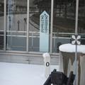 Trivia- 0km post @ Hakodate (1)