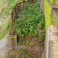 Photos: 北陸本線