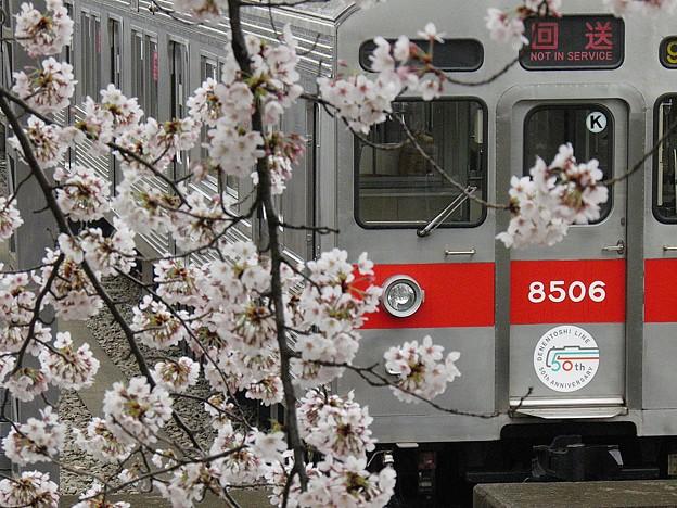 P4030044
