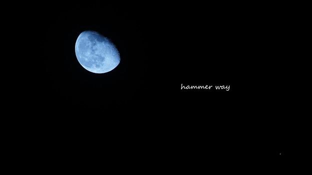 今夜の月と金星