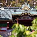 写真: 静岡 久能山東照宮 130405 01