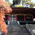 写真: 静岡 久能山東照宮 130405 04