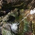 摩周湖の伏流水