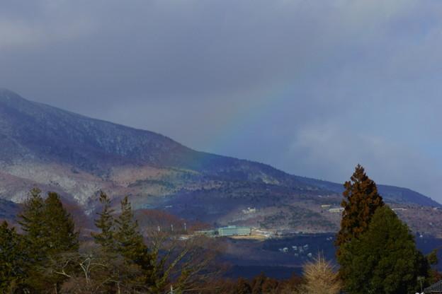 寒そうな虹