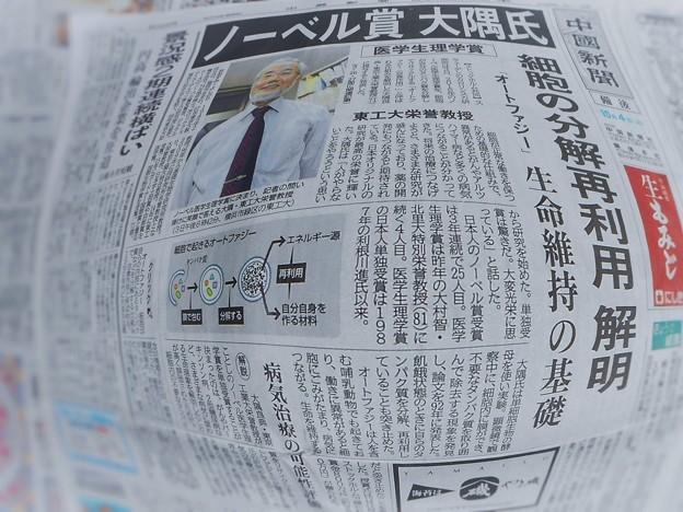 ノーベル賞 大隅氏~細胞の分解再利用 解明~