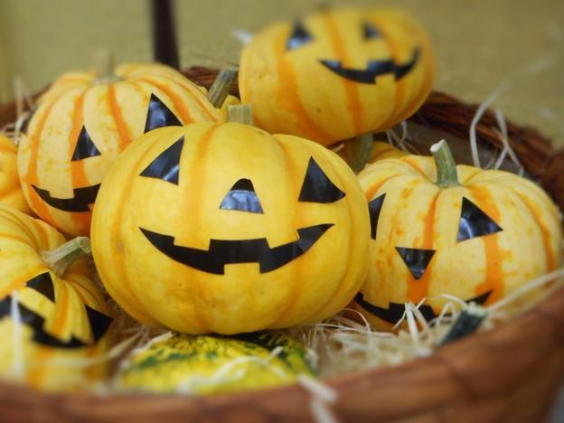 ハロウィンかぼちゃ 発売ちうw