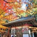 写真: 輪蔵(経蔵)の秋 in 大本山仏通寺
