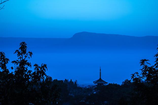 Photos: 夜明け前-1