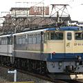 写真: pf1041-20080222