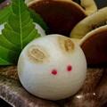 Photos: うさぎのお菓子