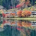 写真: 色鮮やかな湖面を走る その2