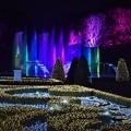 写真: ガーデンパレスの輝き2
