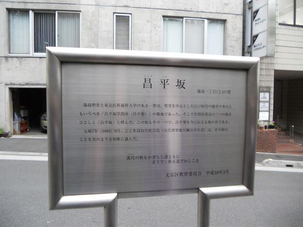 昌平坂(看板)