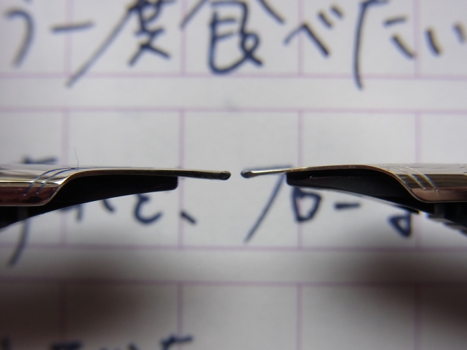 ニース ピュール 細字とシャルトルブルー ロジウム 細軟