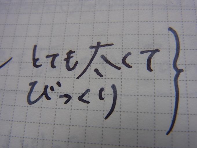 プレジール ノバ・オレンジの中字