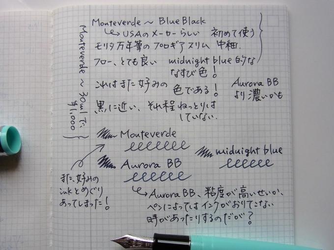 MONTEVERDE BlueBlackを入れたモリタ万年筆店オリジナル プロギアスリムでIDEAに落書き