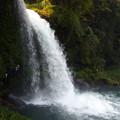 滝裏の小道