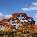 10月18日天神山