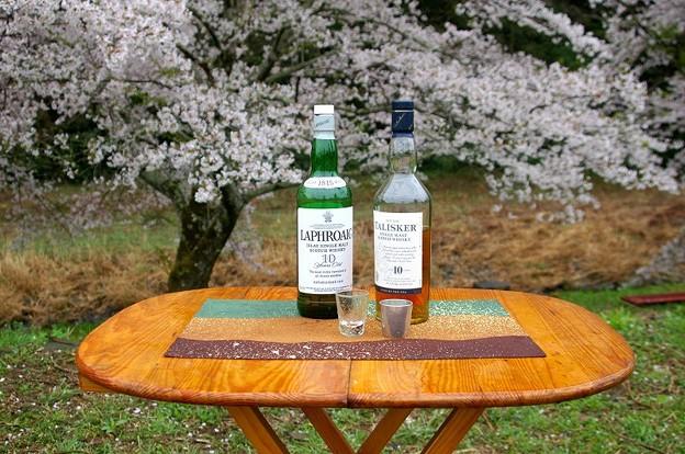 花見ウイスキー今年はこの2種