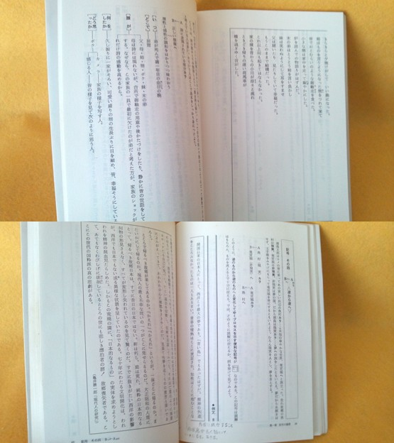 Photos: 書き込み程度等御確認用 現代文入門 記号でつかむイイタイコト 藤田修一
