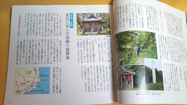 内容見本 探求、県北海岸の魅力 地形 茨城県 雑誌