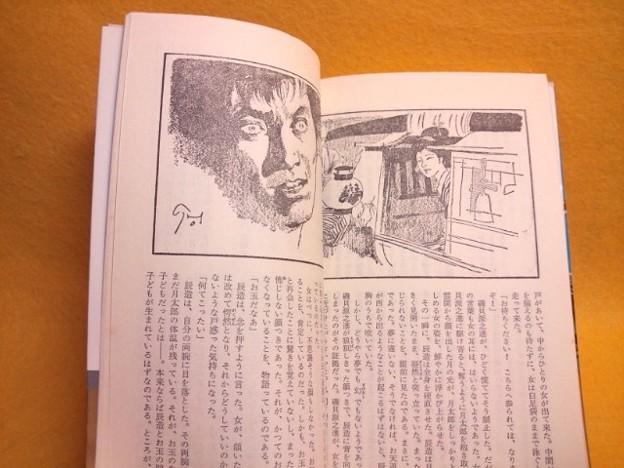 内容見本2 地獄の辰 無残捕物控 笹沢左保 小説