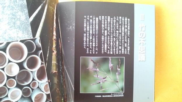 みほん1 常陽藝文 2016年12月号 いばらき 竹百科 植物 雑誌