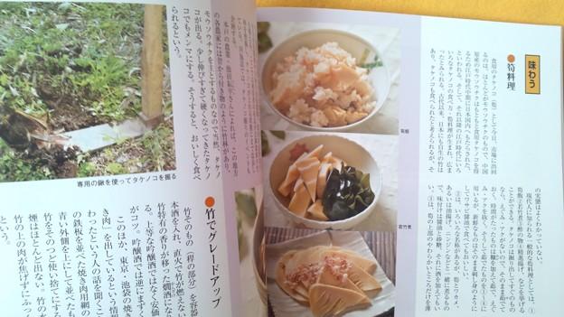 みほん5 常陽藝文 2016年12月号 いばらき 竹百科 植物 雑誌