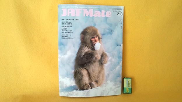 JAF MATE 鈴木ちなみ インタビュー 記事