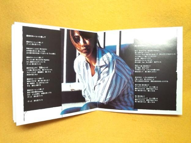 坂井泉水 ザード 永遠 CD 歌詞カード 写真 ZARD