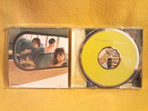 エヴァーラスティング Every Little Thing CD