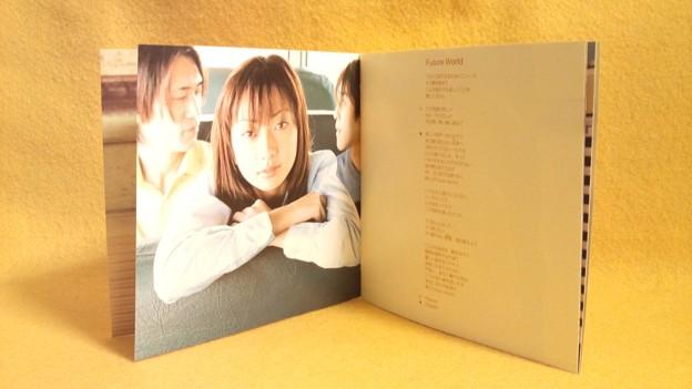 everlasting Every Little Thing CD 持田香織