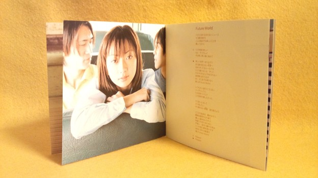 everlasting Every Little Thing CD 持田香織