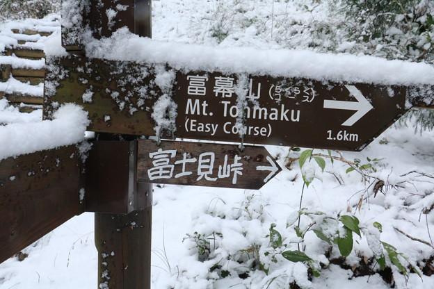 2017年富幕山へ今年☆トミー7回登頂