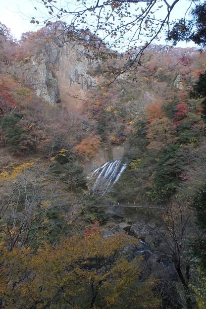 紅葉_袋田の滝 F8698