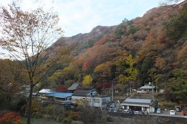 紅葉_袋田の滝 F8705