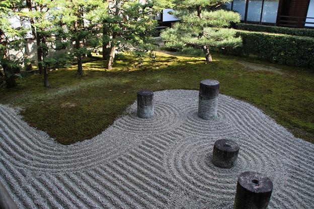 庭園_東福寺 D0375