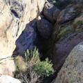 Pinnacle Hike (10)