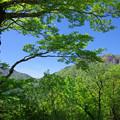 Photos: 岩黒山~よさこい峠から~