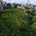 岩のまき場