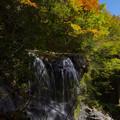 Photos: 滝音響く
