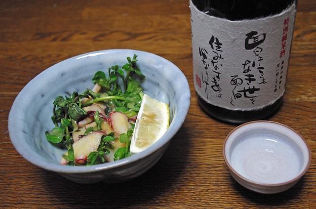 IMGP4127岩国市、特別純米面白きこともなき世を面白くとタコとクレソンの酢味噌和え