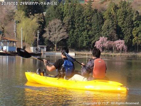 2015-03-29早朝カヤック&お花見 (6)