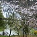 写真: 龍門の滝 (1)