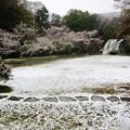 写真: 龍門の滝 (2)